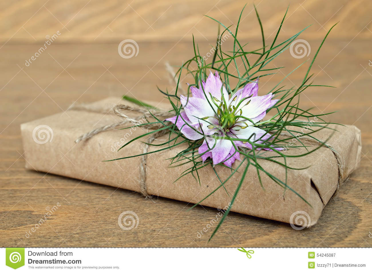 nigella sativa research papers Abstract: nigella sativa is a wonder plant which has the potential to cure  the  complete globe is explored for bioprospecting by researchers (khare 2004.