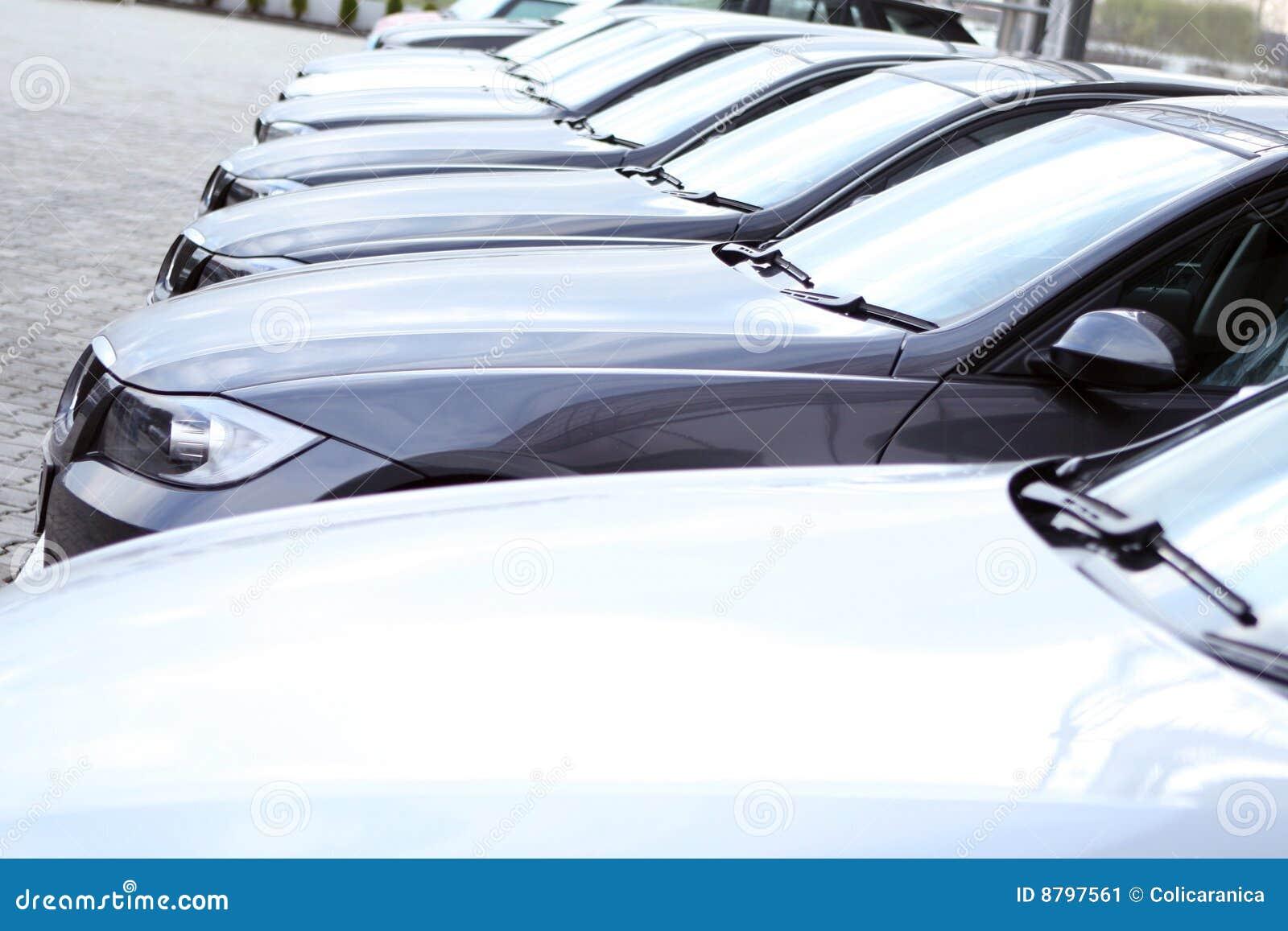 Parco delle automobili