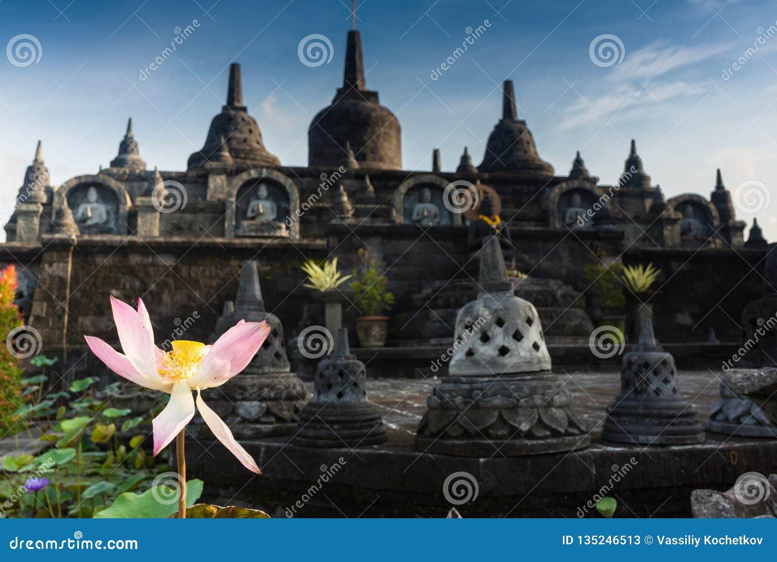 Parco di Taman Lumbini dall altezza del tempio Candi Borobudur complessa ad alba nella nebbia Borobudur di Candi