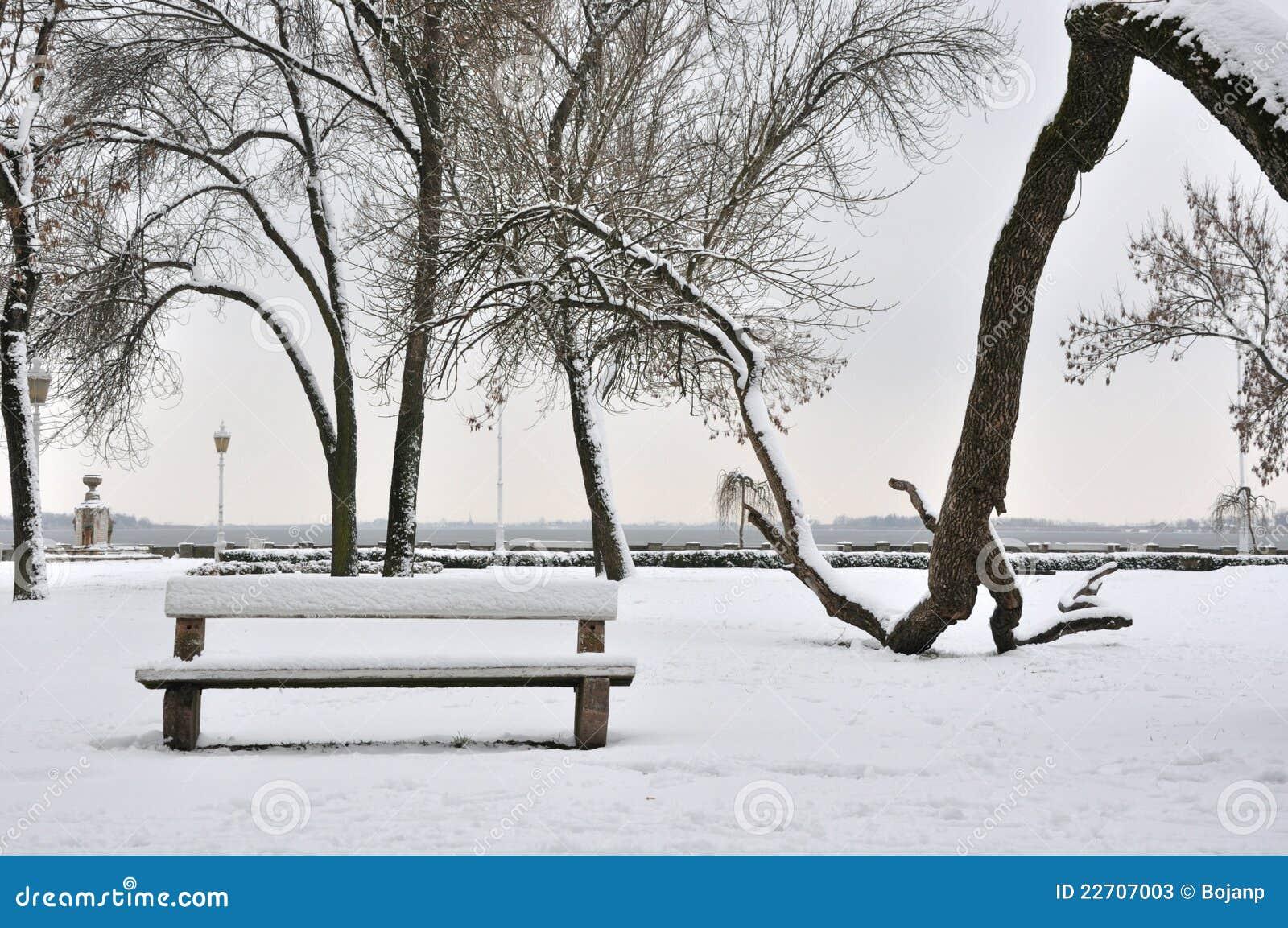 Parco in gennaio