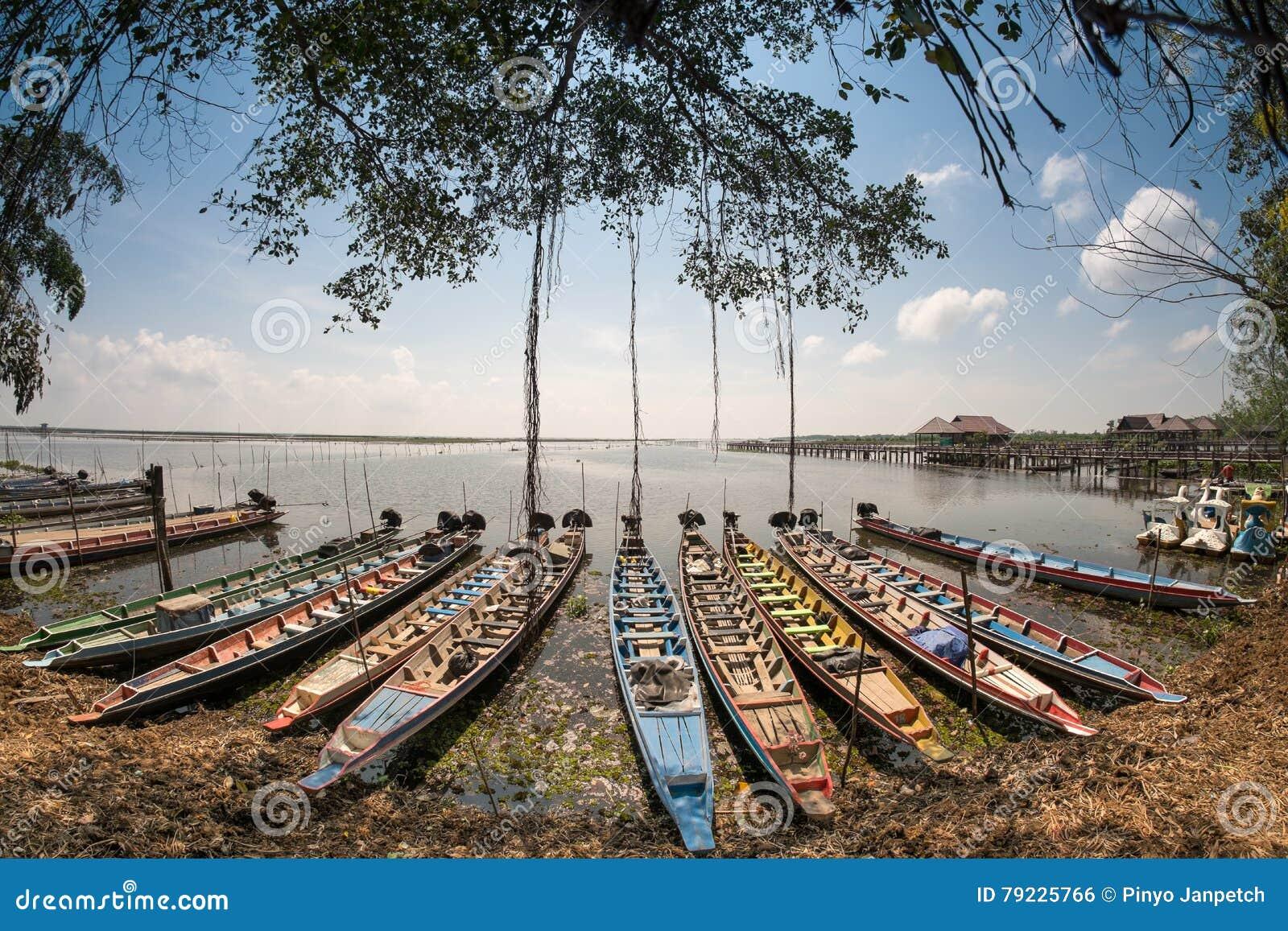 Parco nazionale di Thalanoi del crogiolo di A lungo coda in Phatthalung, Tailandia