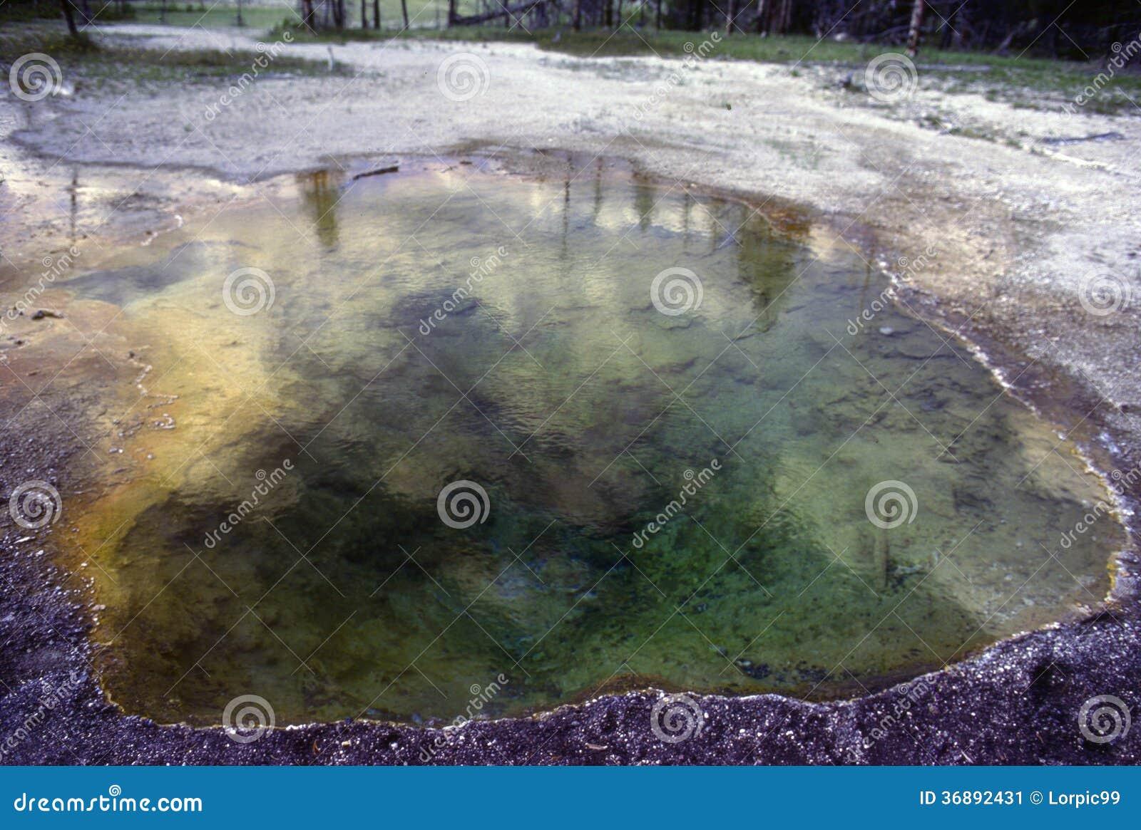 Download Parco Nazionale Di Yellowstone Immagine Stock - Immagine di depositi, naturalizzato: 36892431