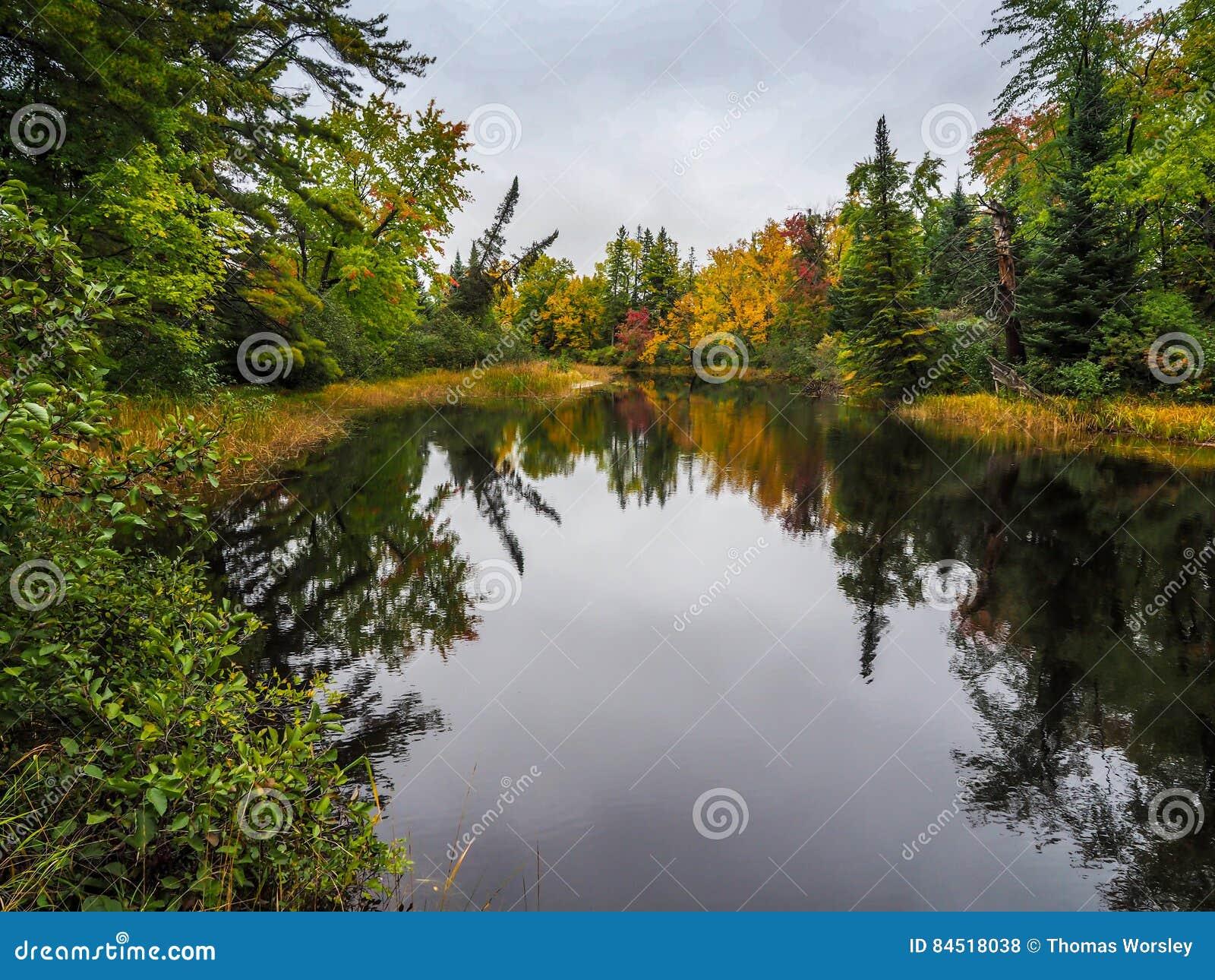 Parco provinciale di Autumn Fall Color Marsh Bonnechere 2