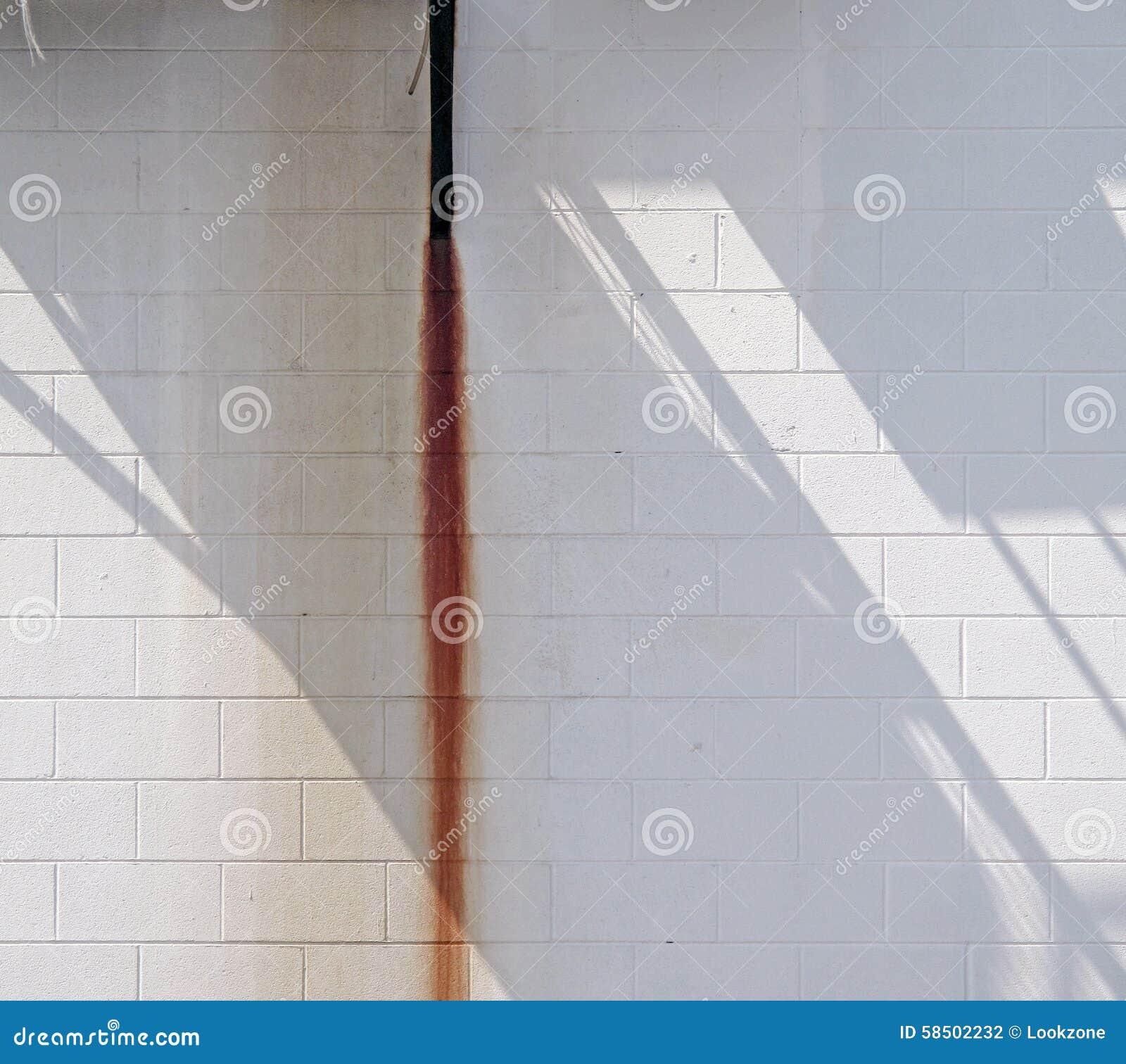 Pared blanca con la raya y la sombra del moho
