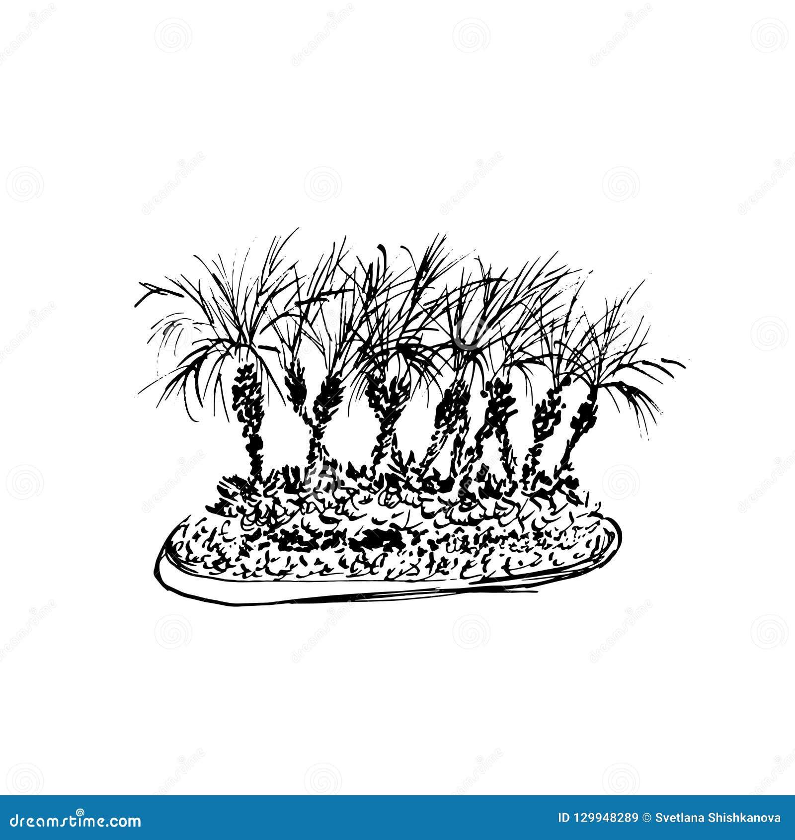 Pared de ladrillo roja Bosquejo negro aislado en el fondo blanco Ejemplo del grupo de las palmas de coco Vector drenado mano