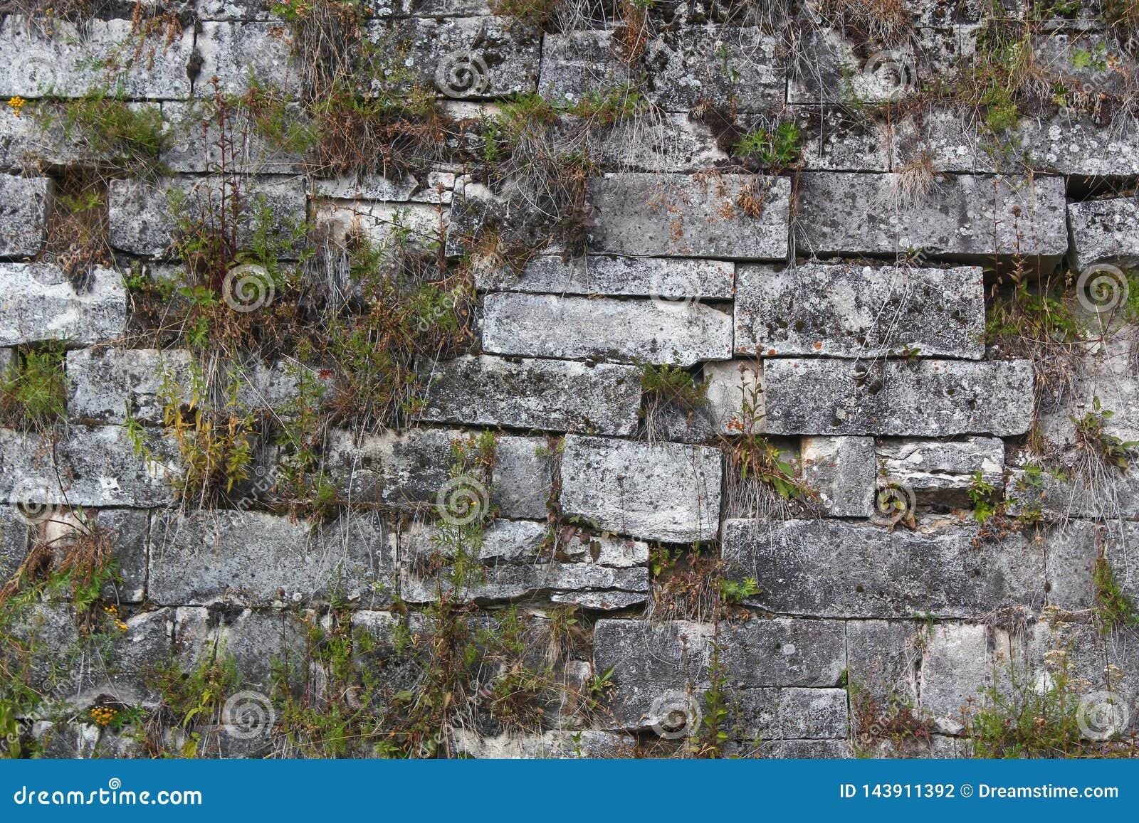 Pared de ladrillo vieja antigua del templo