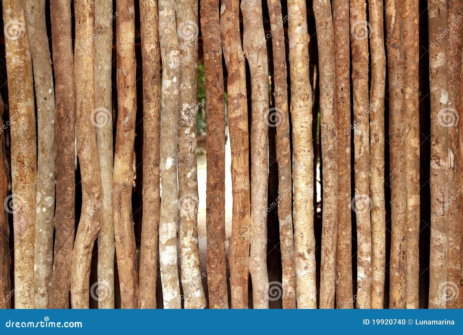 Pared de madera de los troncos en casa de la selva de la - Pared de madera ...