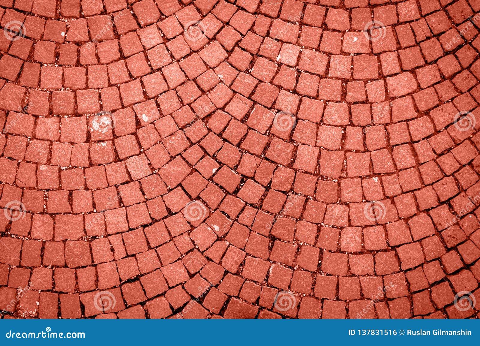 Pared de piedra hecha con los cuadrados Color coralino de vida del año 2019 Concepto principal de la tendencia