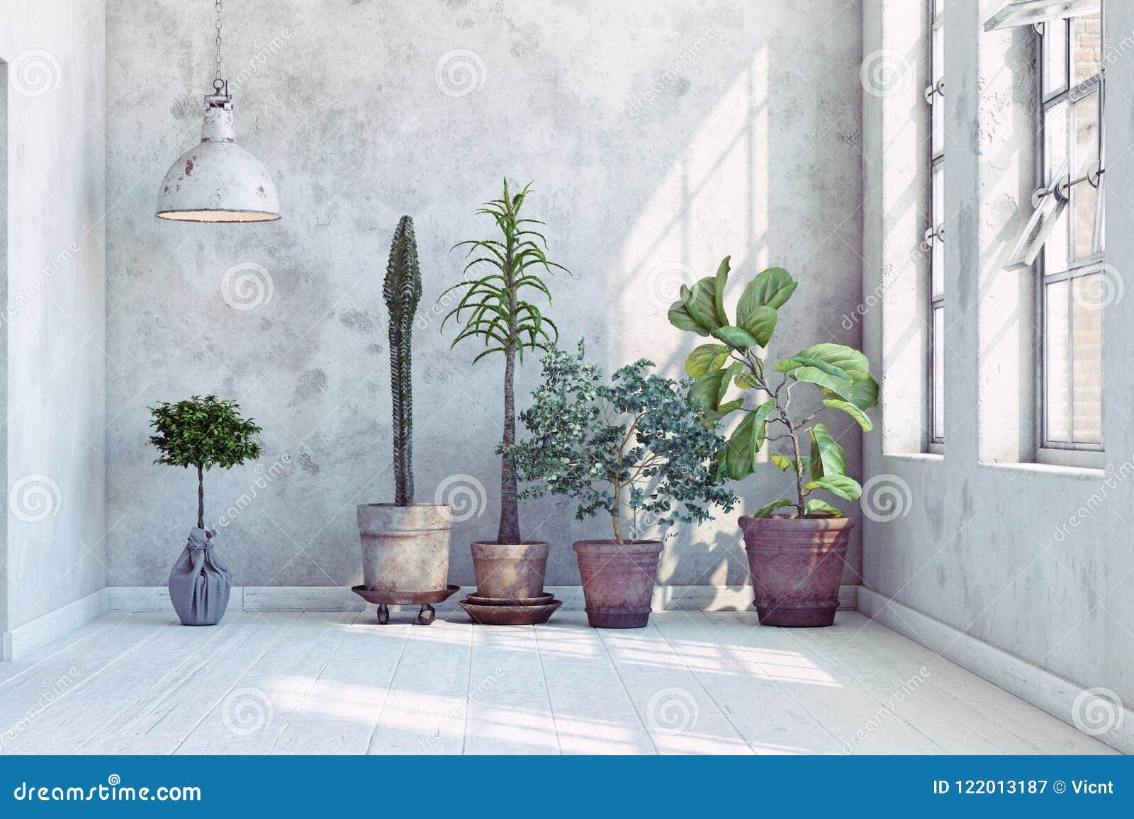 Pared del vintage con las plantas fijadas