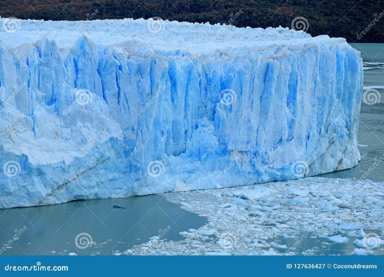 Pared enorme asombrosa del color de los azules claros de Perito Moreno Glacier en el parque nacional del Los Glaciares, EL Calafa