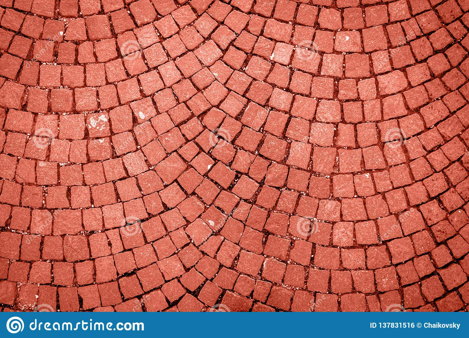 Parede de pedra feita com quadrados Cor coral de vida do ano 2019 Conceito principal da tendência