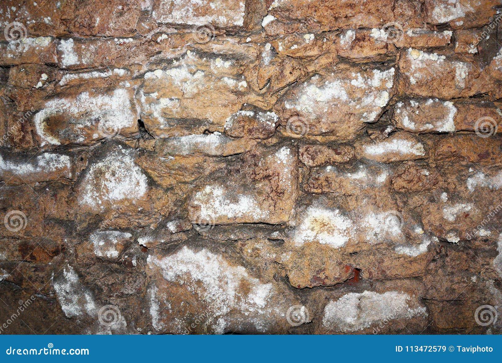 Parede de pedra velha no porão