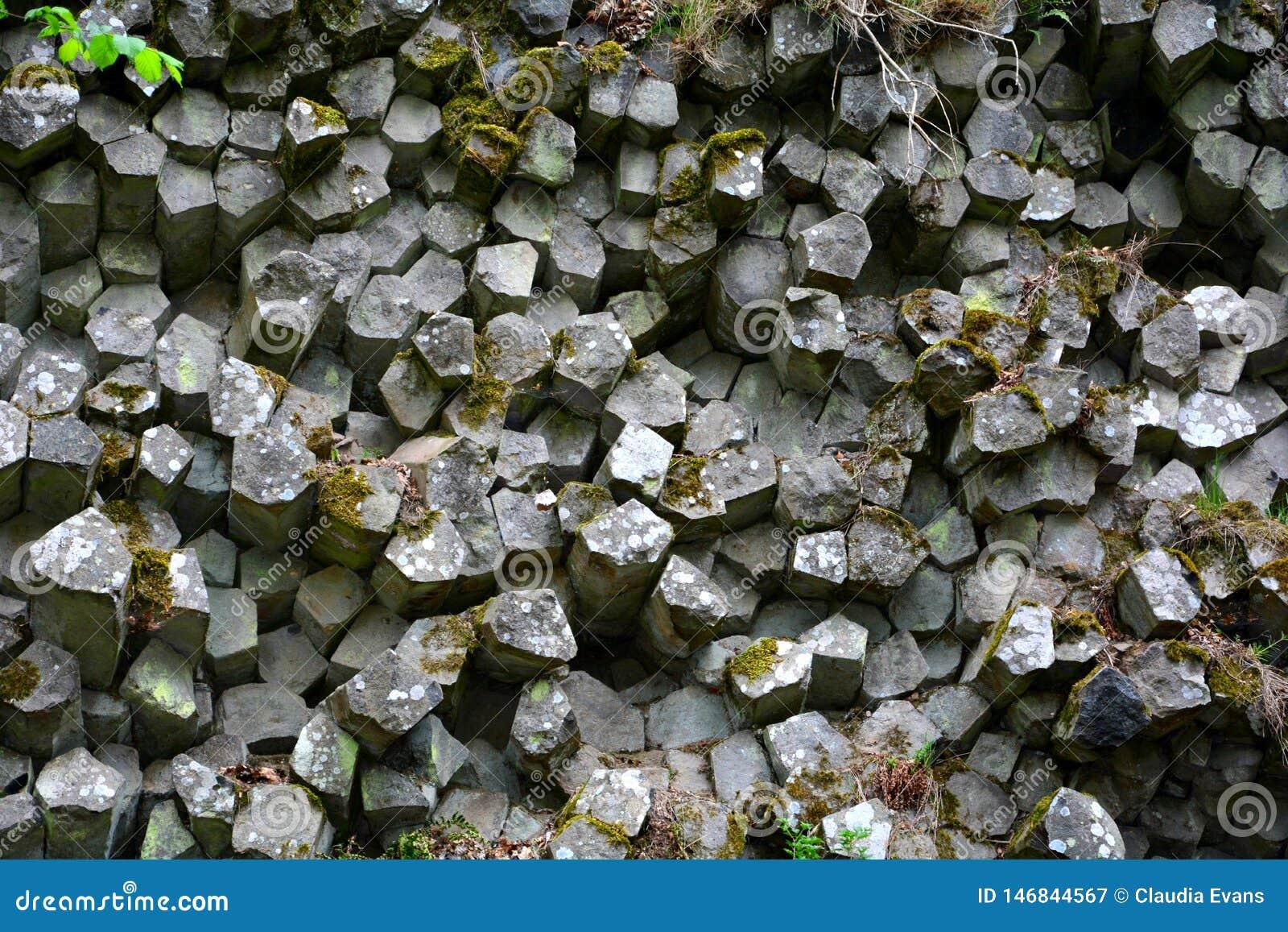 Parede de prisma - colunas do basalto no Rhön, Baviera, Alemanha