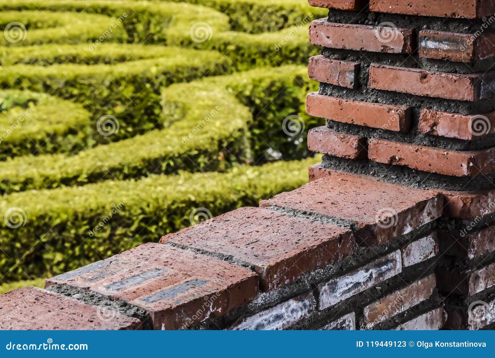 A parede de tijolo vermelho e a abstração verde do fundo do jardim contrastam