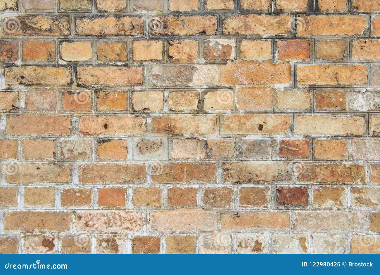 Parede de tijolos velha do marrom escuro
