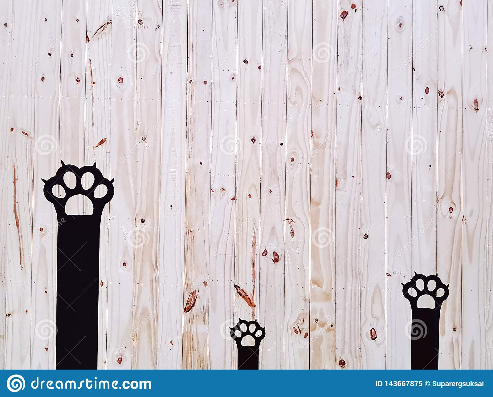 Parede preta decorativa de Cat Paws On Wooden Plank
