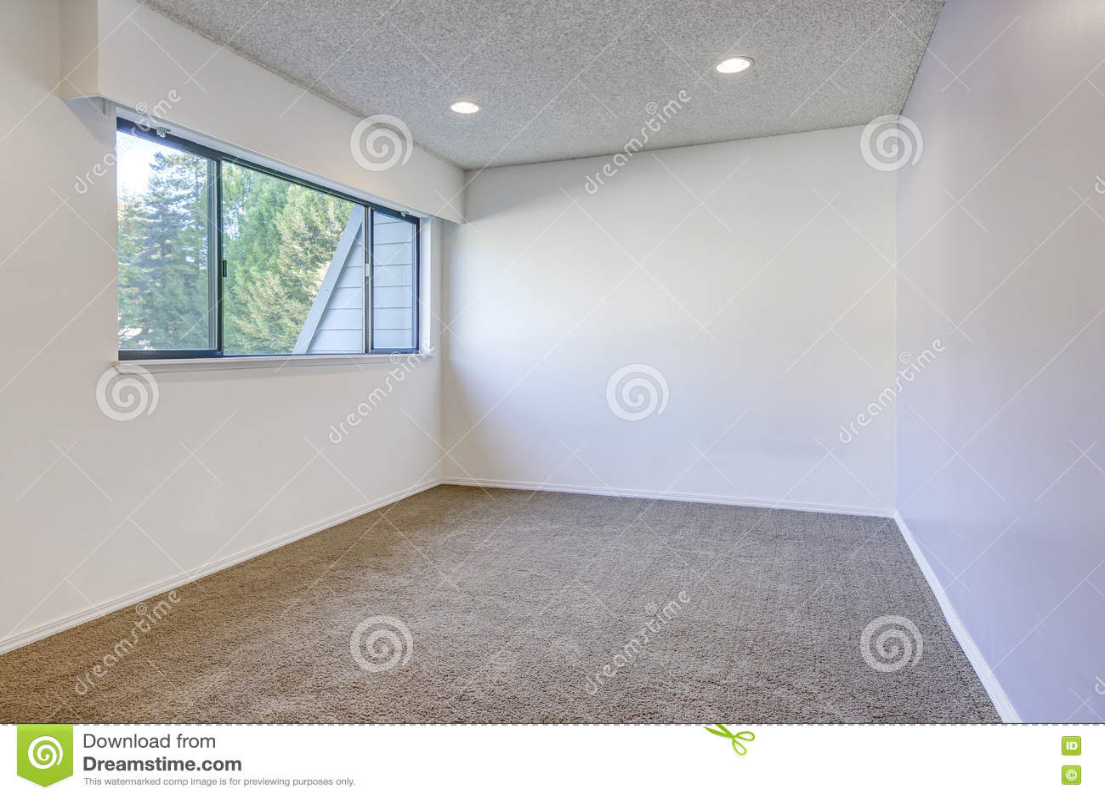 Parede roxa pálida do contraste na sala vazia