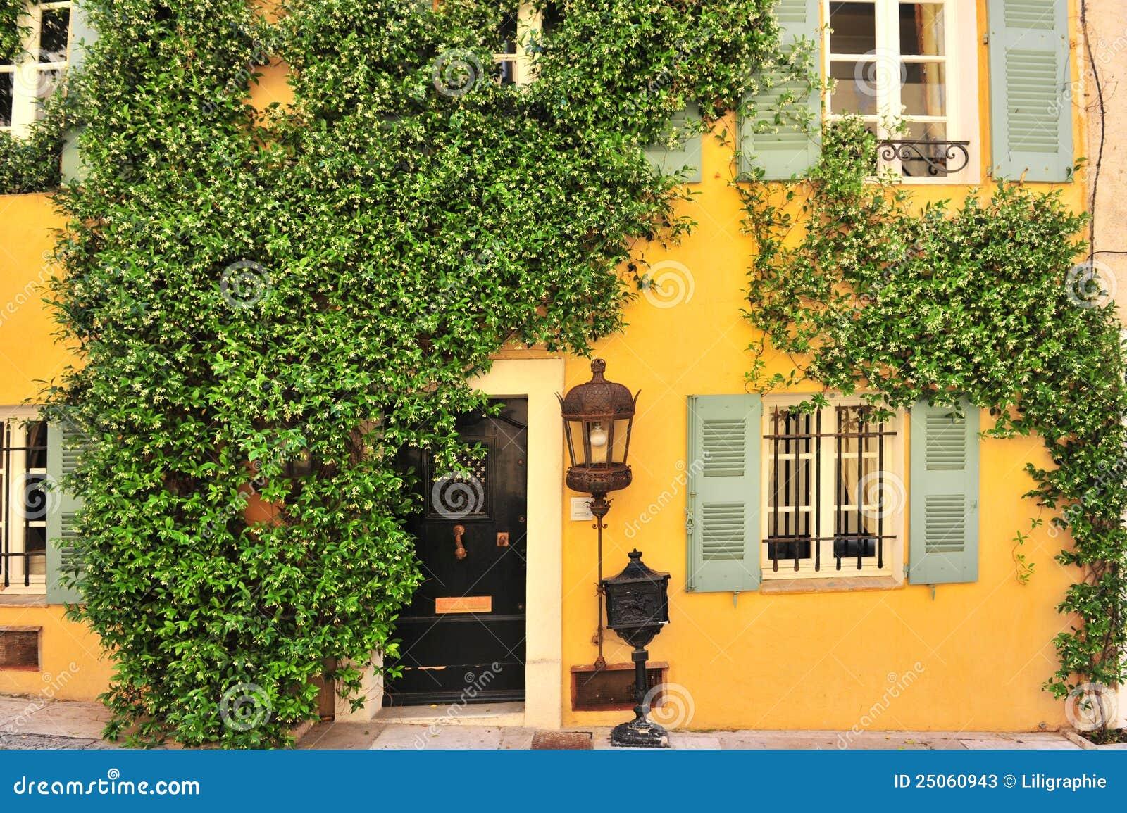 Parede velha da casa com porta indicadores e plantas for Classic house green street