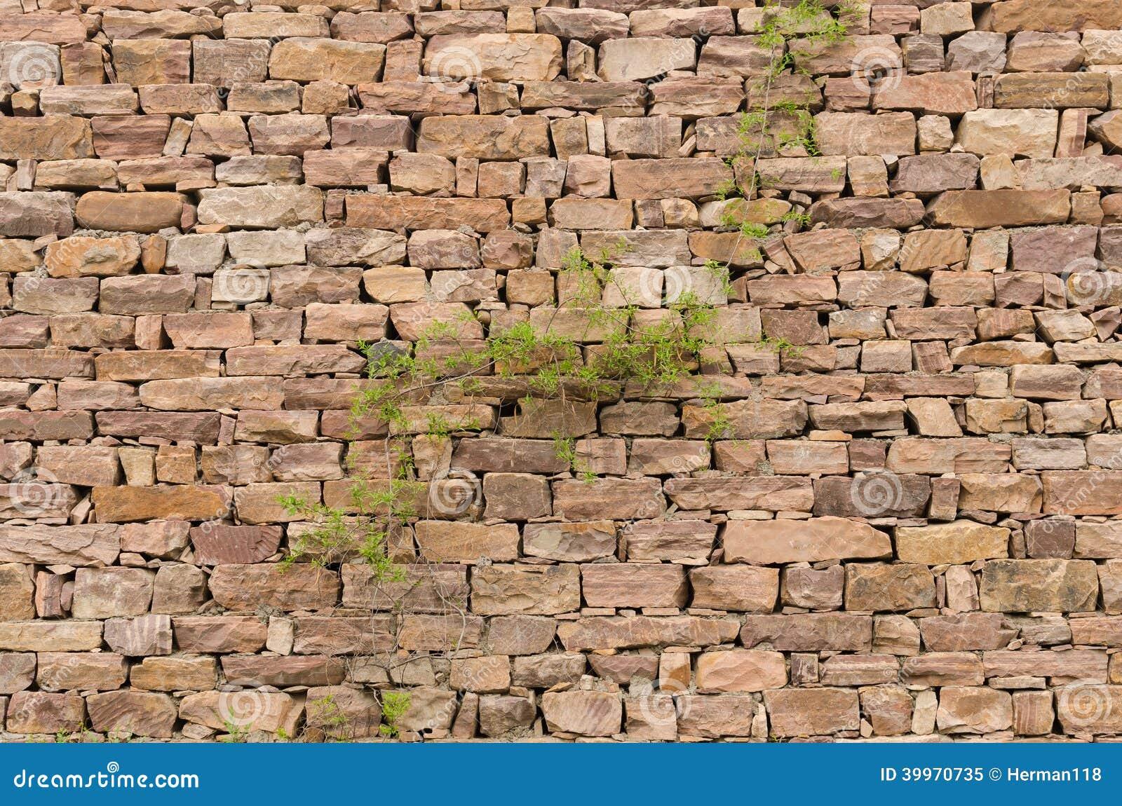 Paredes de piedra plantas foto de archivo imagen 39970735 for Papel para pared imitacion piedra