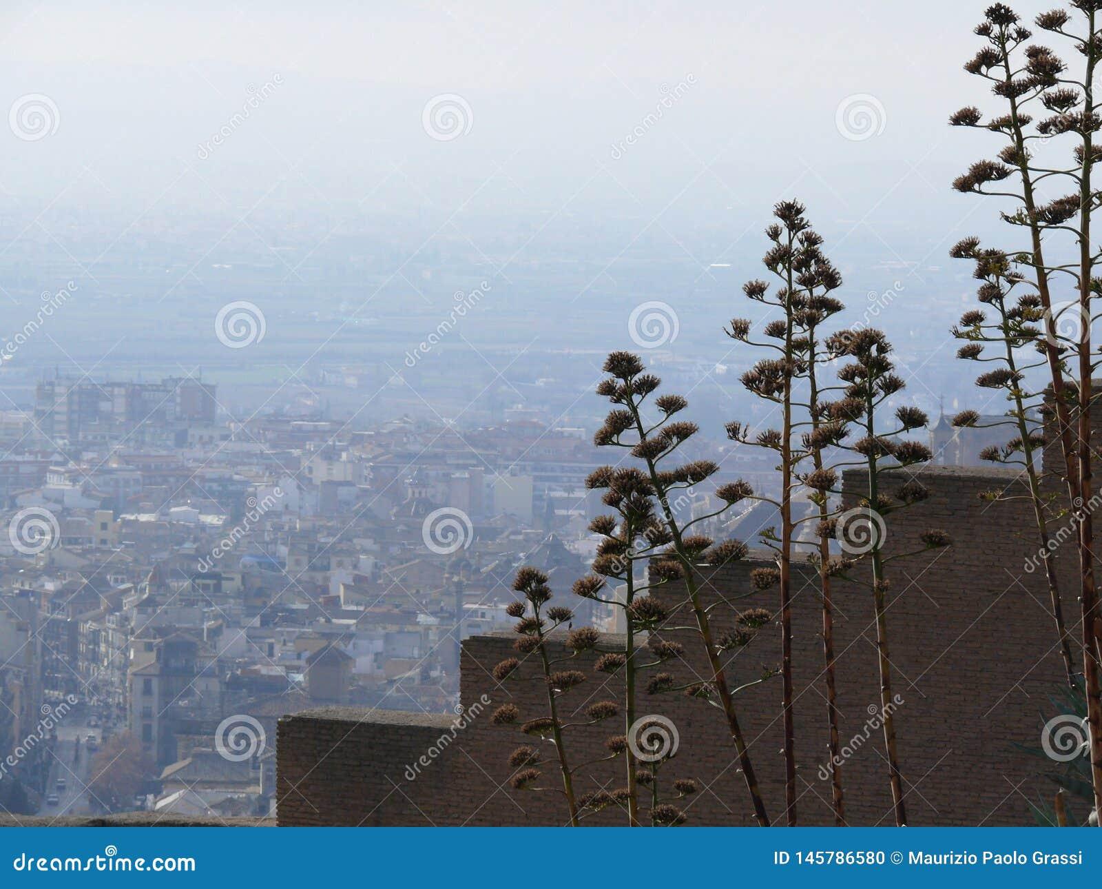 Paredes pisadas com vistas de Granada
