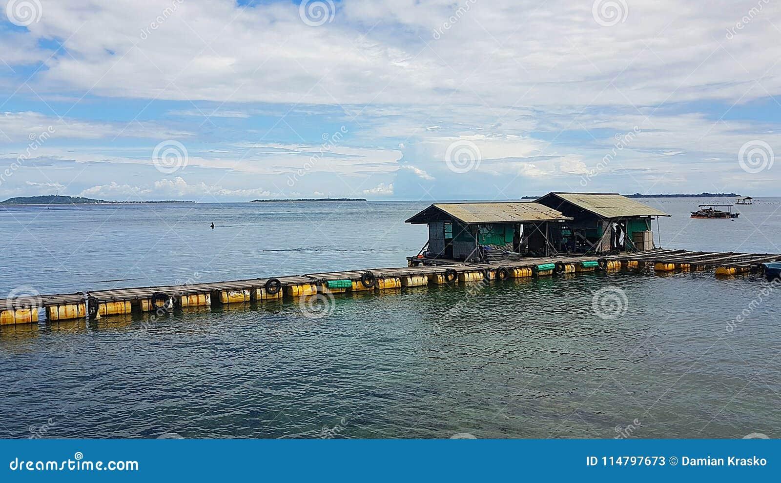 Parellandbouwbedrijf op Lombok