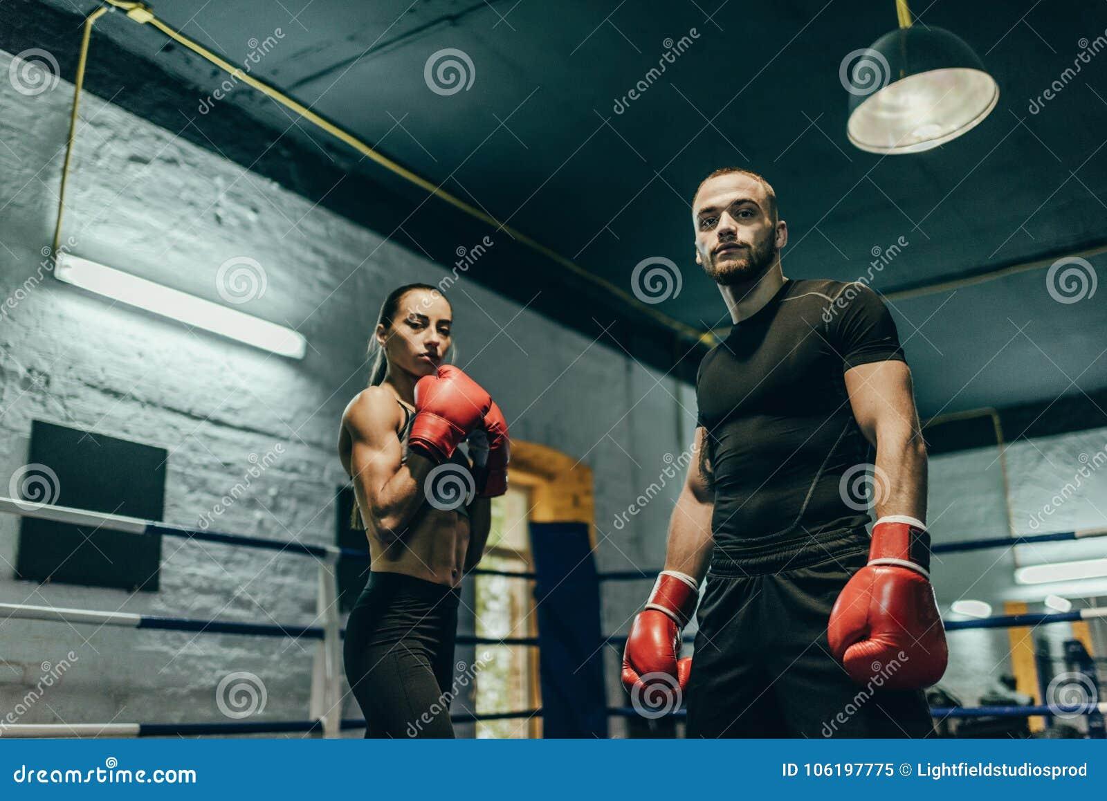 Pares de boxeadores