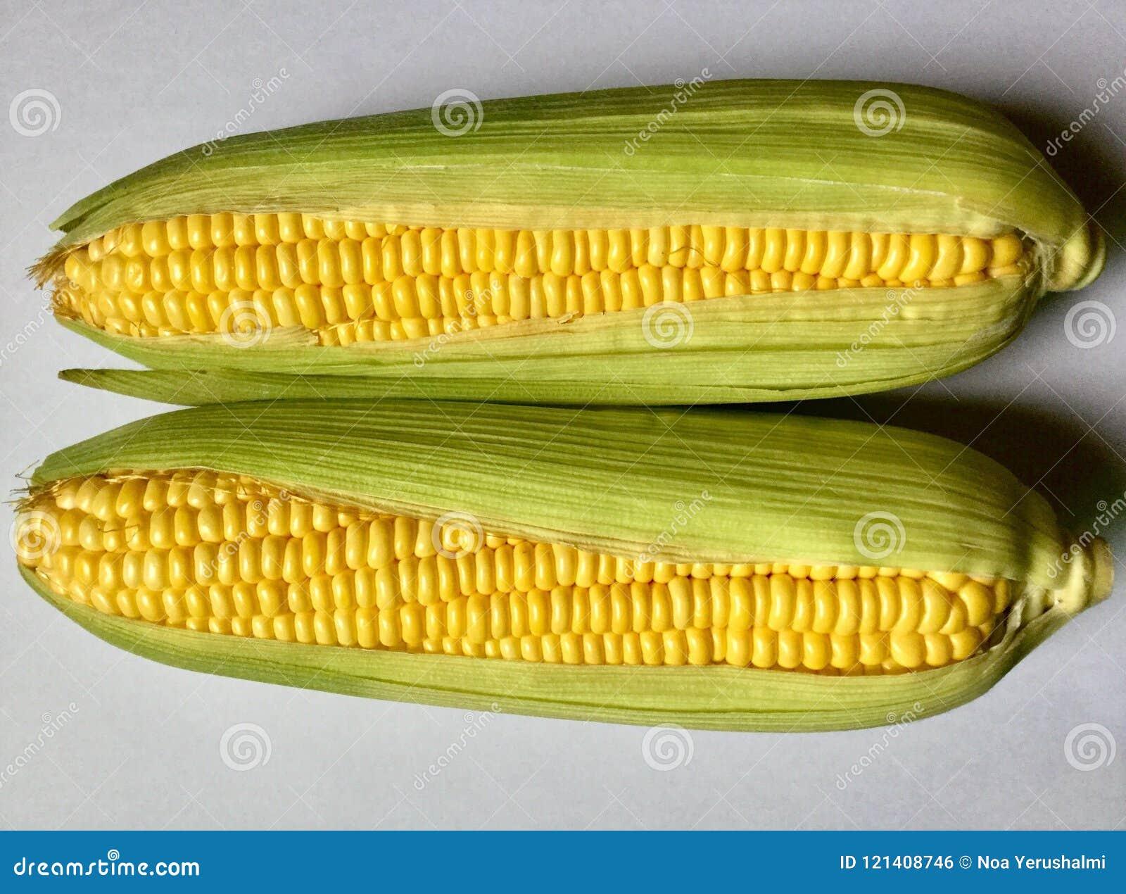 Pares de espigas de milho