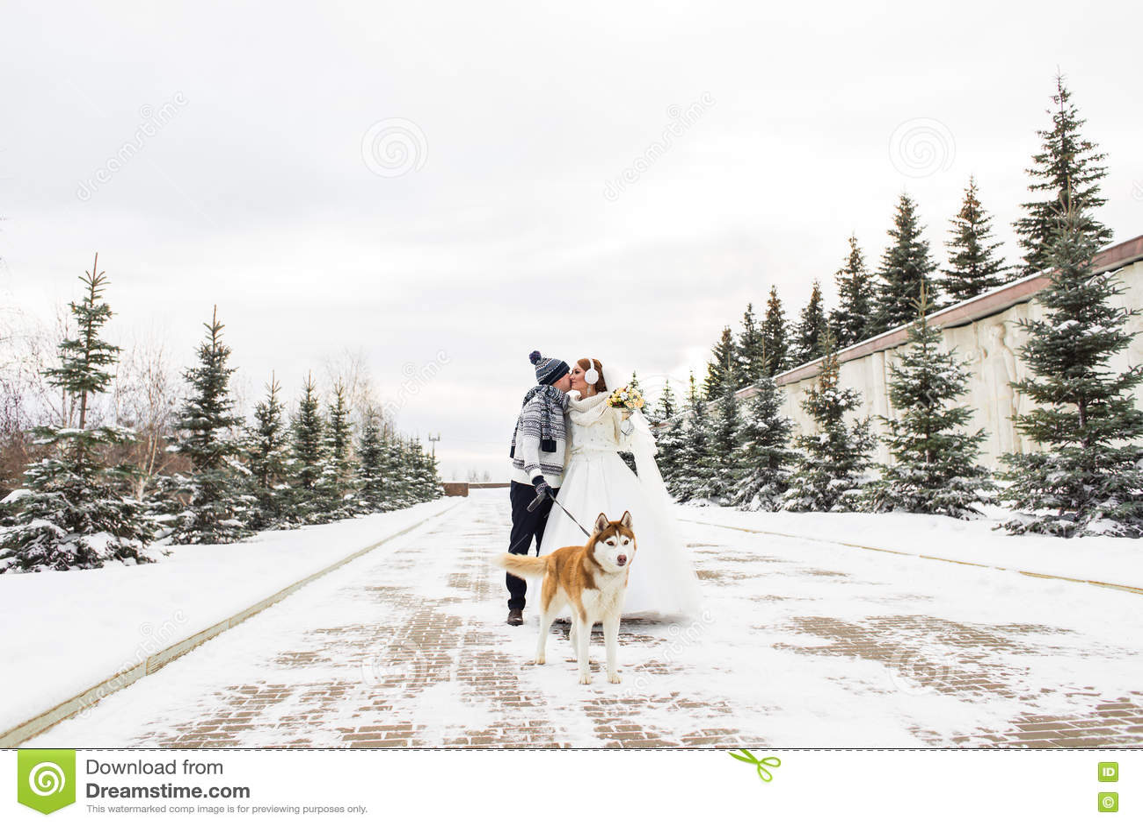 Pares de la boda y un perro lindo en invierno