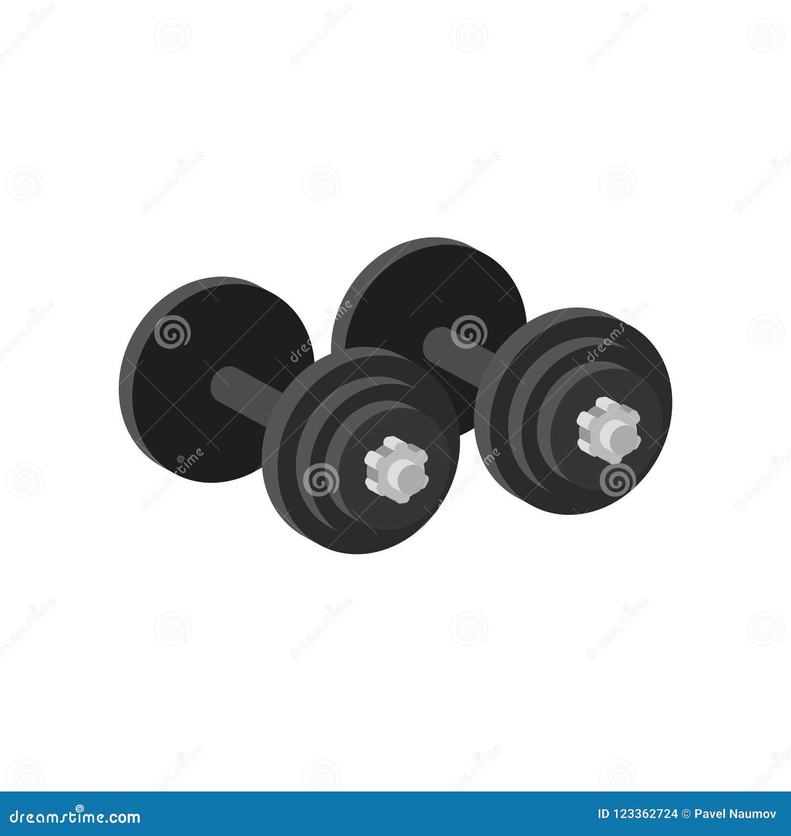 658d59231 Pares de pesos pesados para o exercício ou a músculo-construção Equipamento  para o gym Esporte e tema saudável do estilo de vida Ilustração lisa  colorida do ...
