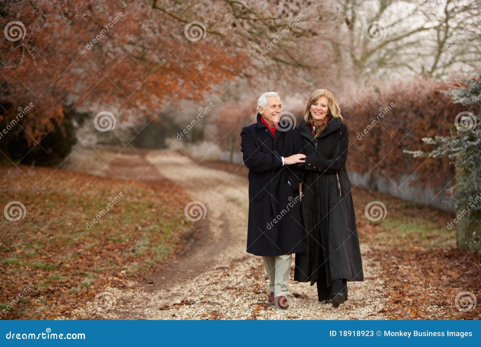 Pares mayores en caminata del invierno con Landsc escarchado