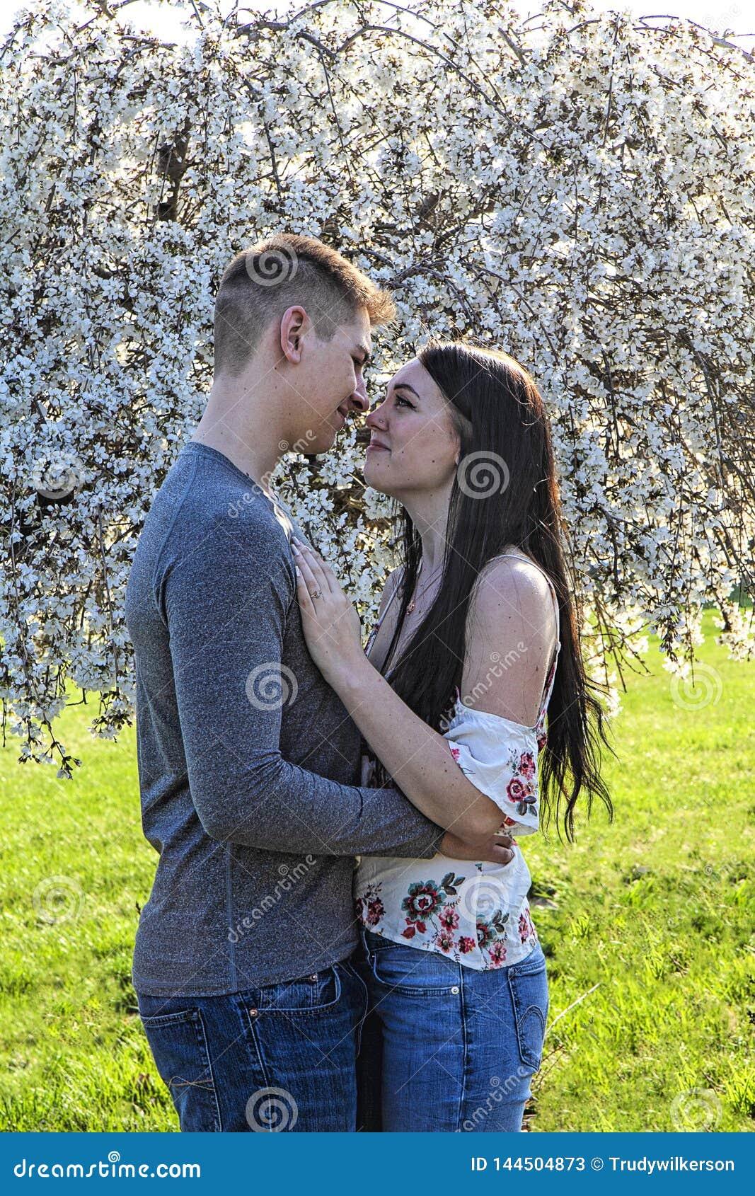 Pares que abrazan delante de árbol hermoso de la flor de cerezo que llora en primavera enganchado