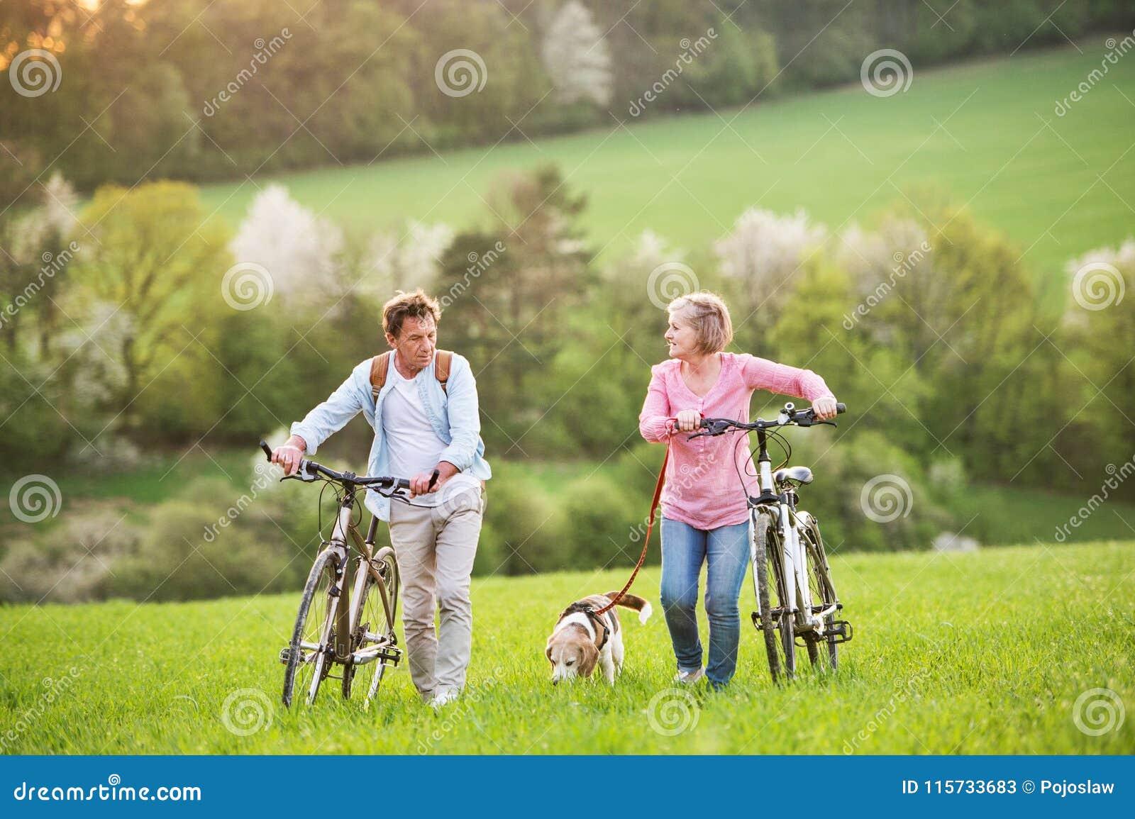 Pares superiores bonitos com bicicletas e cão fora na natureza da mola