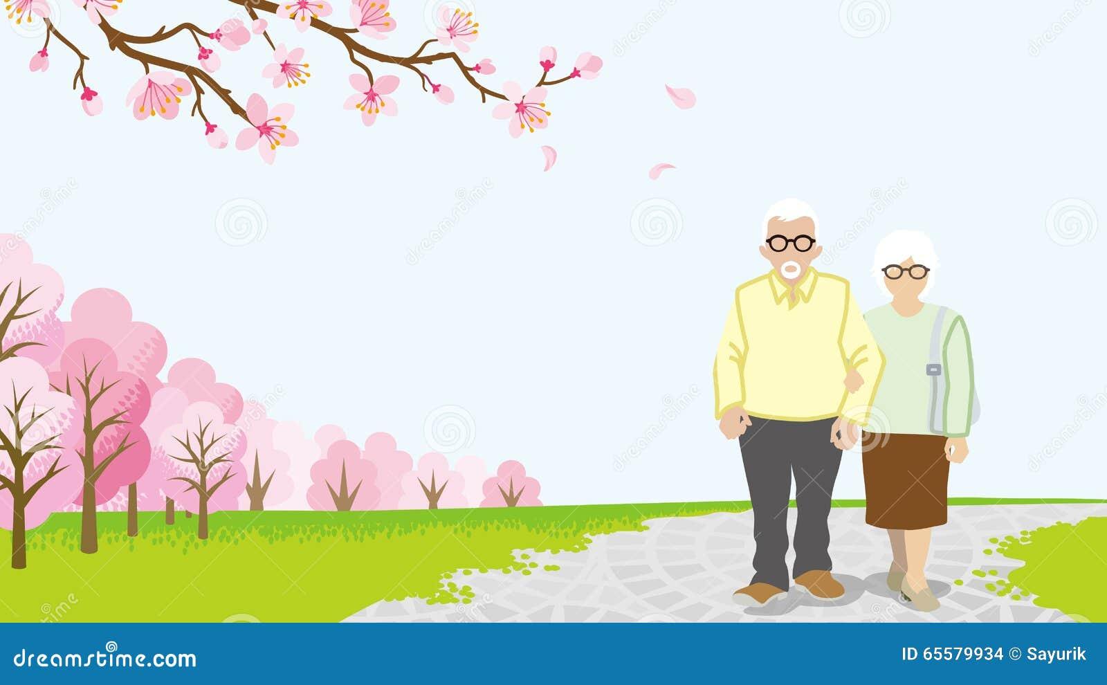 Pares superiores de passeio, árvores de cereja da flor completa - EPS10
