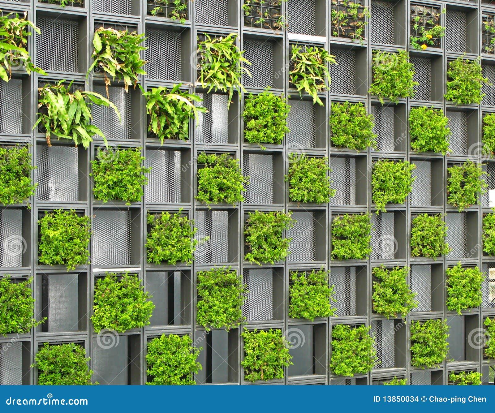 Una parete esterna di griglia della pianta verde di una costruzione.