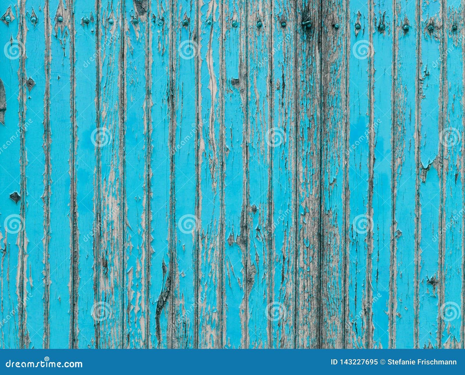 Parete di legno della plancia del turchese con la pelatura della pittura