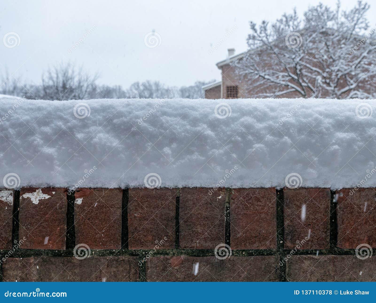 Parete di meraviglia di inverno