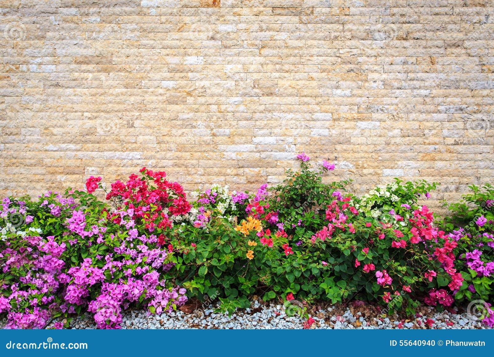parete di pietra del travertino e giardino decorativo