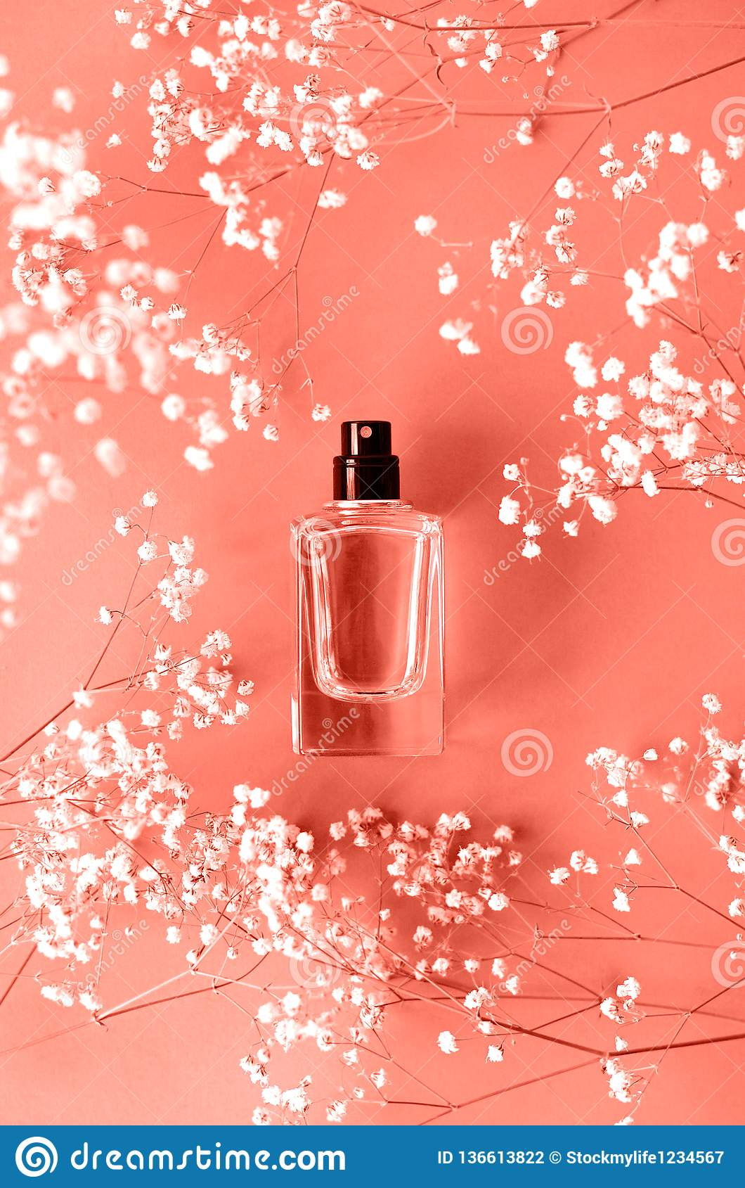Parfümieren Sie Glas mit Gypsophila um korallenrote Farbe
