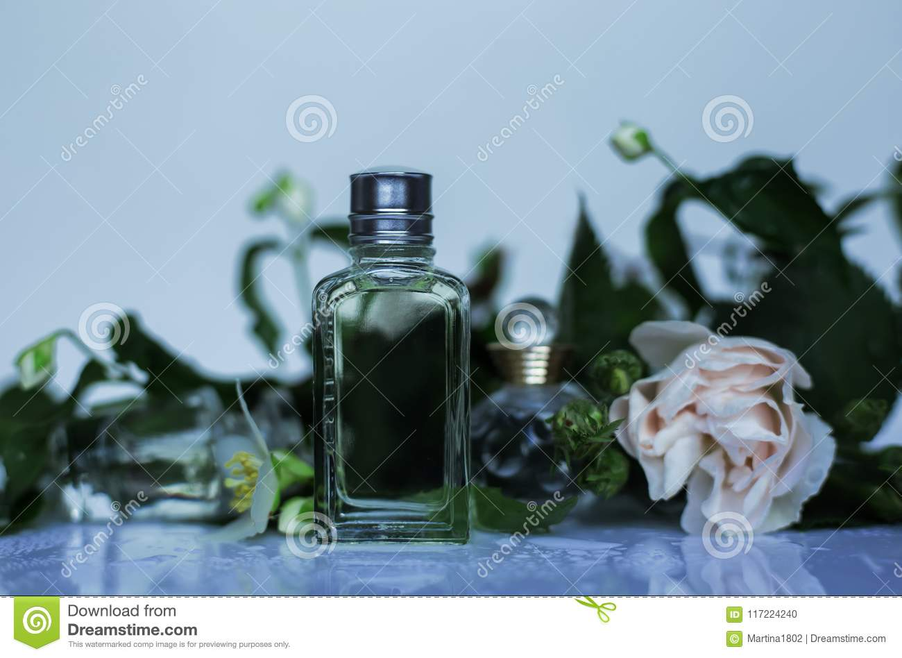 Parfumerie Cosmétiques Collection De Parfum Photo Stock Image Du