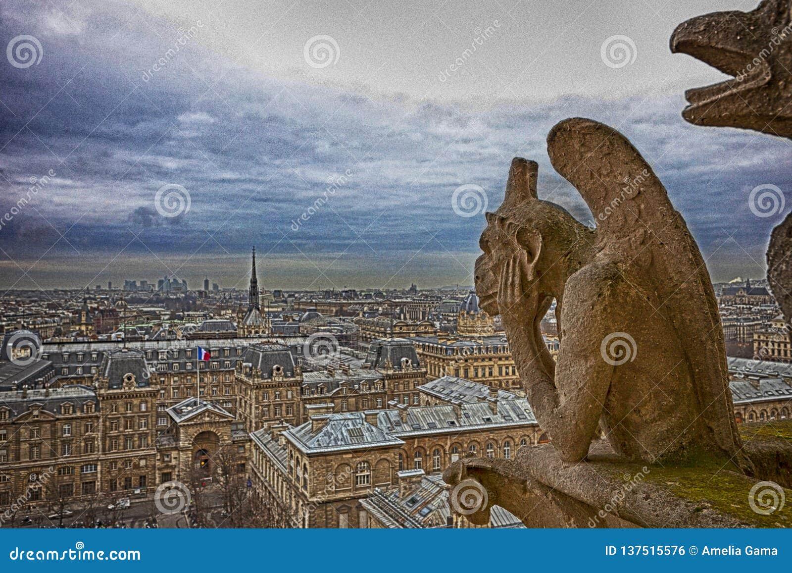 Paris-Ansicht von Notre Dame - künstlerische Ansicht mit Drama
