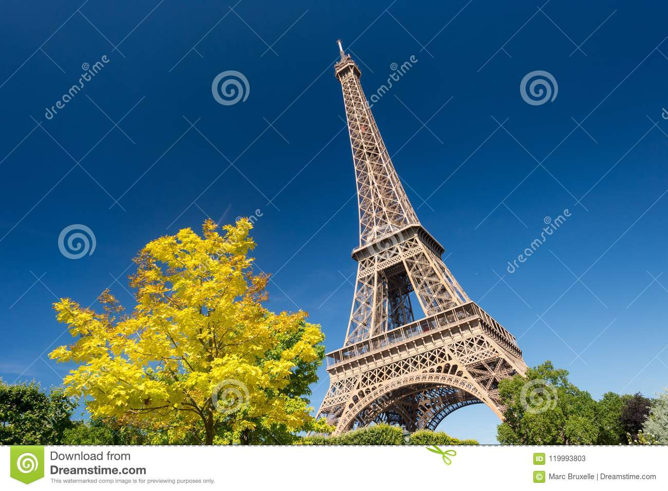 Eiffel Tower from the Champ de Mars gardens in summer.