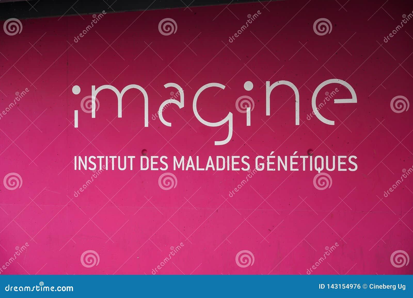 French Institut Imagine