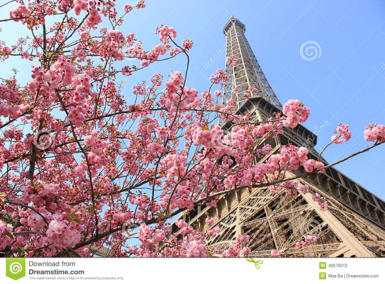 paris france eiffel tower at spring stock photo image of paris voyage 40570512. Black Bedroom Furniture Sets. Home Design Ideas