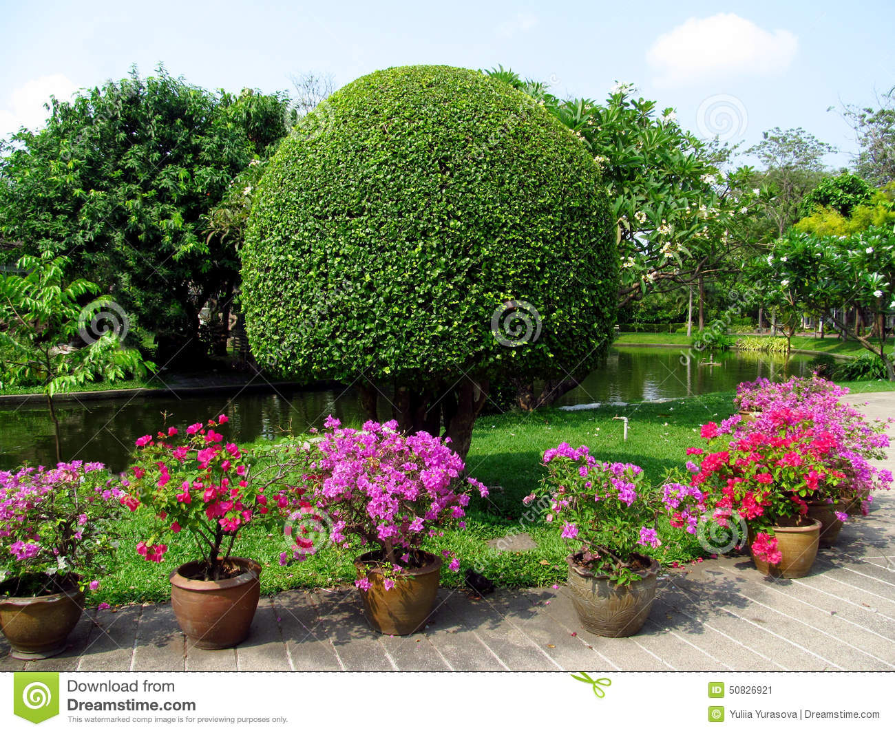 Park With Beautiful Trees And Flowers In Pots Stock Image Image Of