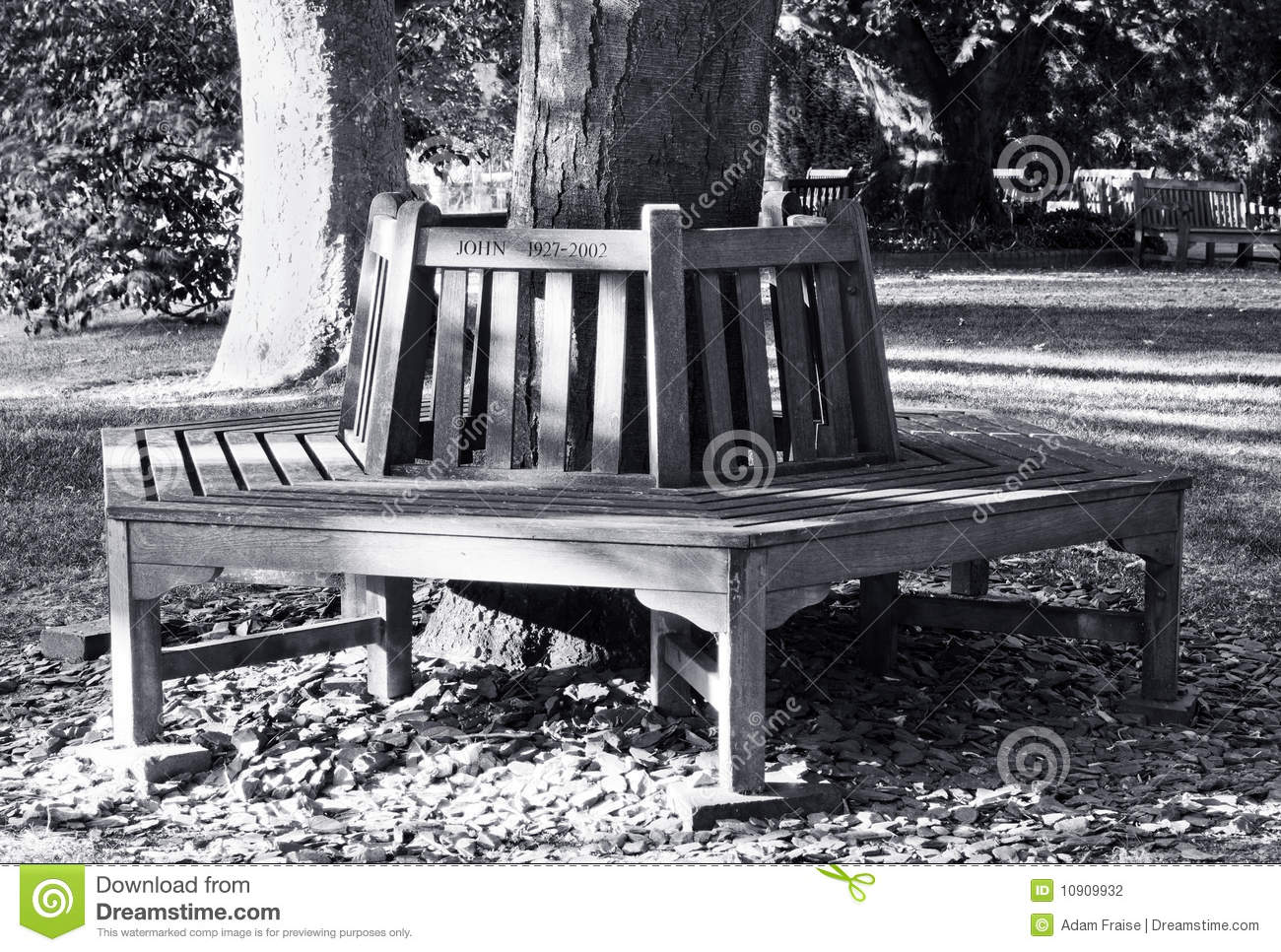 Park bench stock photography image 10909932 for Tree trunk garden bench