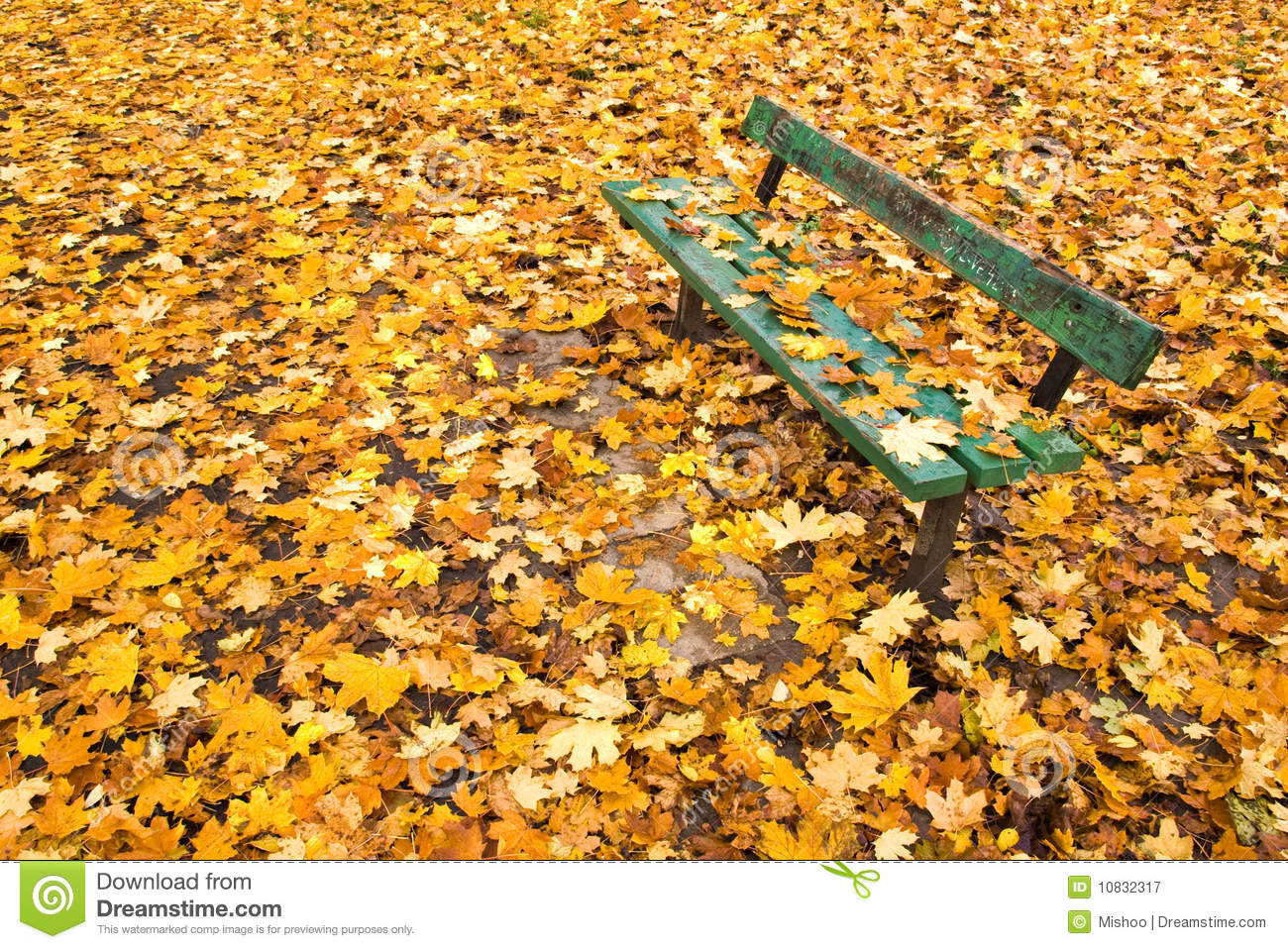 autumn leaves on bench - photo #14