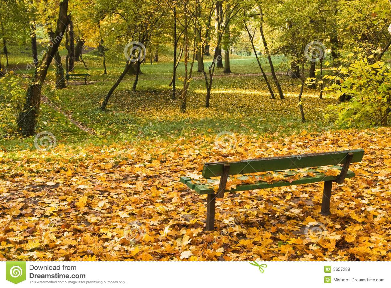 autumn leaves on bench - photo #13