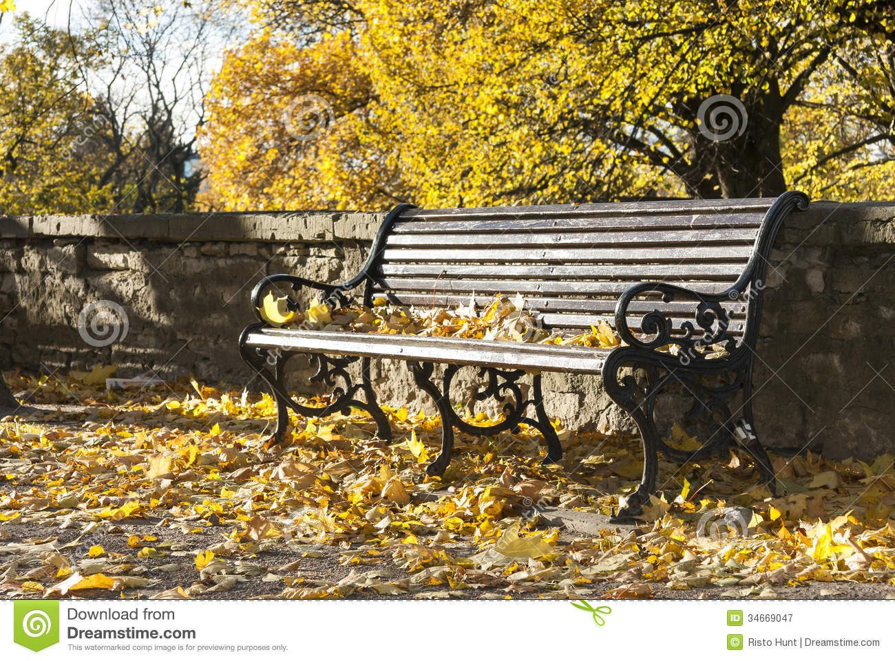 Park bench in sunny autumn day.