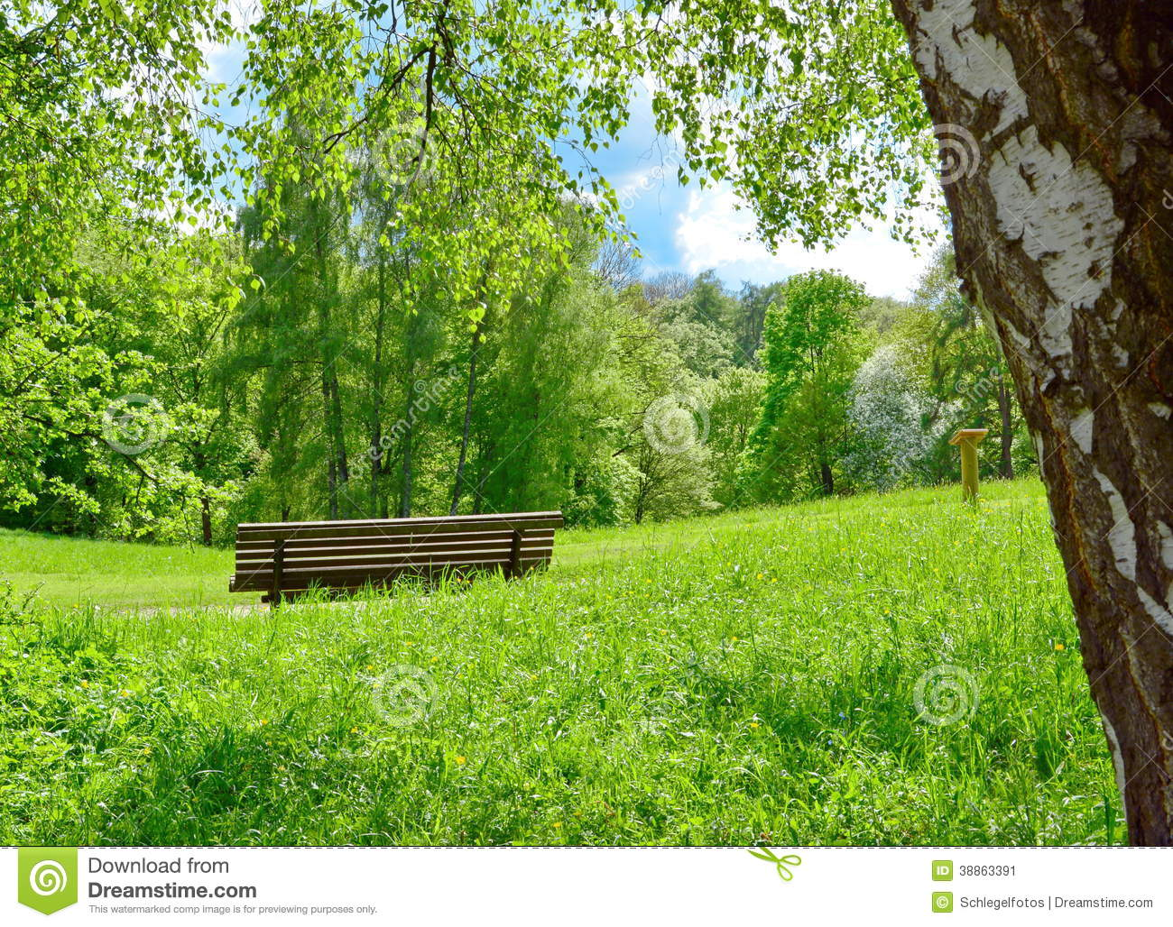 Park Bench In Nature Stock Photo - Image: 38863391