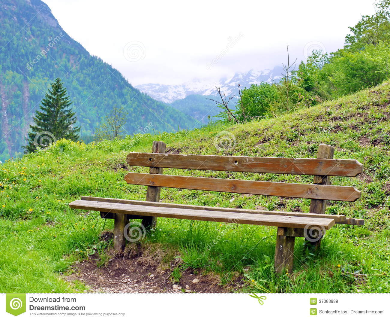 Park Bench In Nature Stock Image. Image Of Nature, Empty